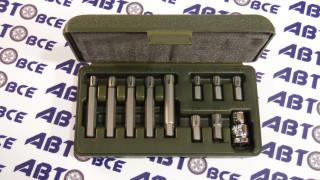 Набор вставок 3/8 RIBE 25mm 11предметов ДелоТехники